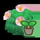 動森-山茶花