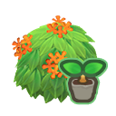 動森-桂花