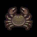 動森-中華絨螯蟹