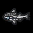 動森-吸盤魚