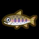 動森-櫻花鉤吻鮭
