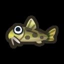 動森-泥鰍