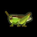 動森-稻蝗