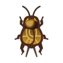 動森-蟋蟀