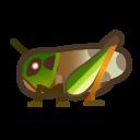 動森-飛蝗
