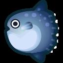 動森-翻車魚