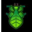 動森-葉竹節蟲