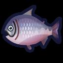 動森-帝王鮭