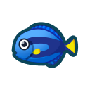 動森-擬刺尾鯛