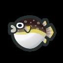 動森 河豚